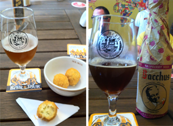 mr_beer_sampa_beer_tour_quenaofaltemalte